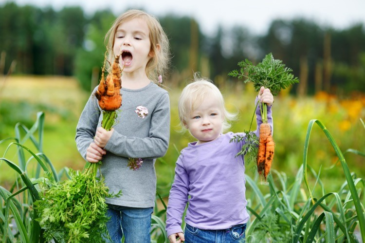 Kids Gardening Organically