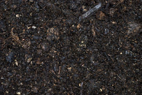 Moist organic soil
