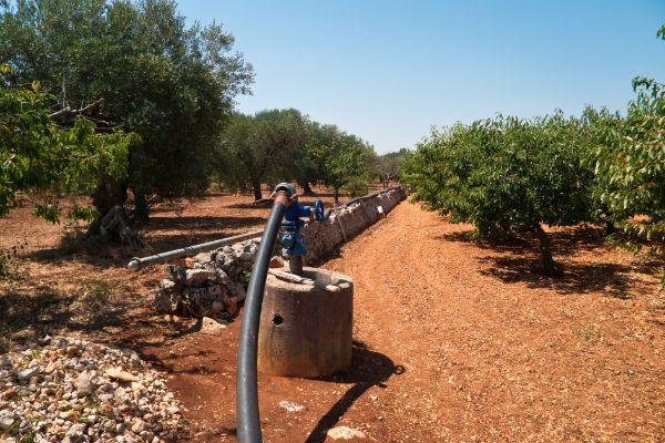 Subsoil irrigation