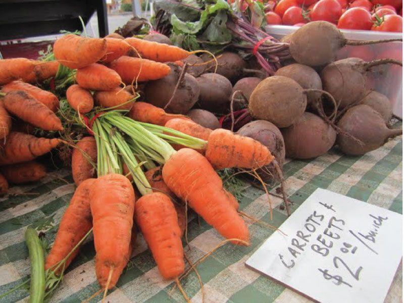 Garden Ripe Carrots