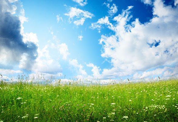 Garden Air