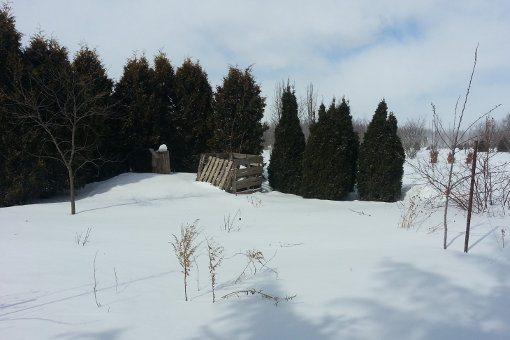 My Organic Garden In Winter