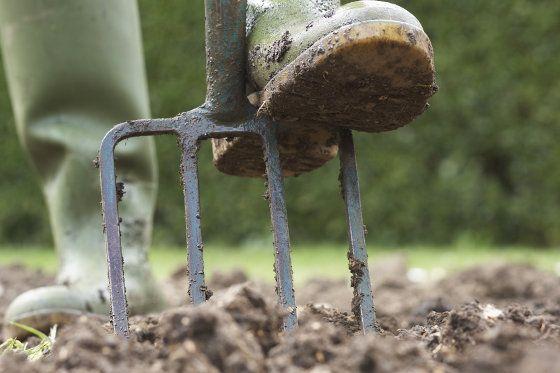 Image result for digging garden