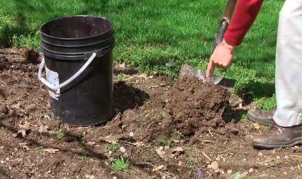 Soil Testing Labs Need A Good Sample